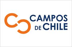 Campos de Chile