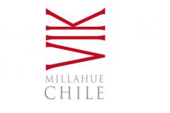 Viña Vik Chile